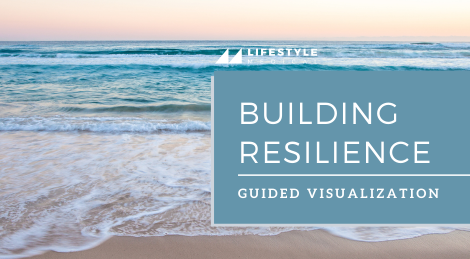 Guided Visualization